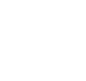 The Resiliency Solution Chapel Hill Branding and Chapel Hill Logo Design