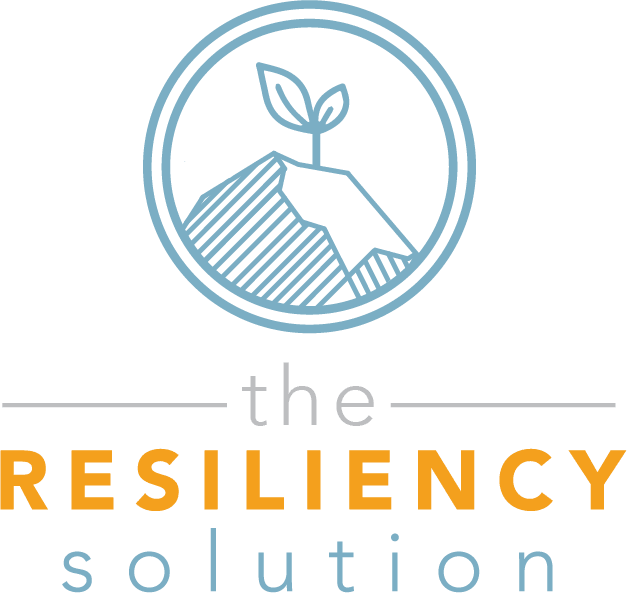 Branding and Logo Design for the Resiliency Solution