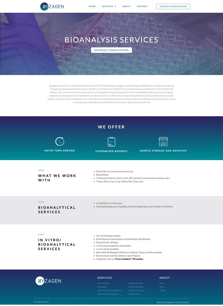Web Design Mockup of Xyzagen Services Detail Page
