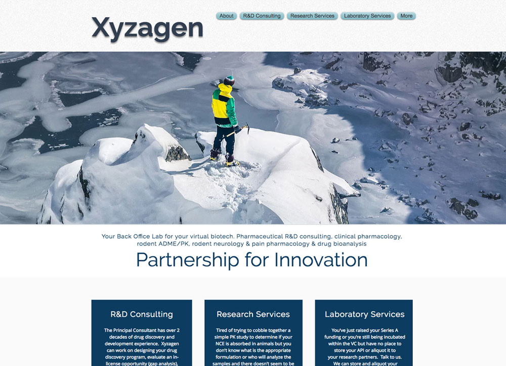 Screenshot of the home page of the old xyzagen site